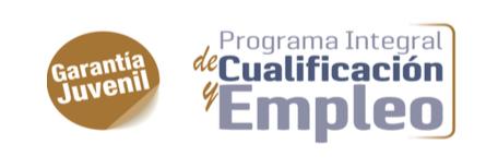 Programa de cualificación para el empleo PICE