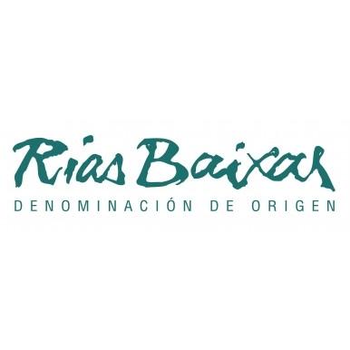 TÚNEL DEL VINO D.O. RIAS BAIXAS. HOTEL HIBERUS 21/11/2016